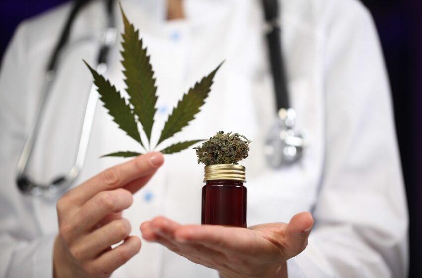 Câmara: plantio de maconha para fins medicinais