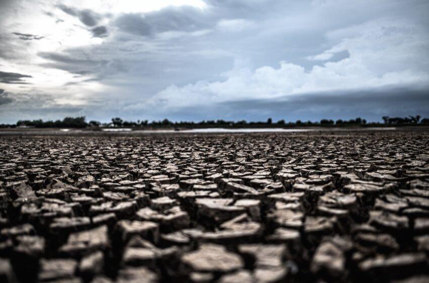 """Crise hídrica: """"Chegamos a um ponto drástico para todo o meio ambiente"""", diz especialista"""